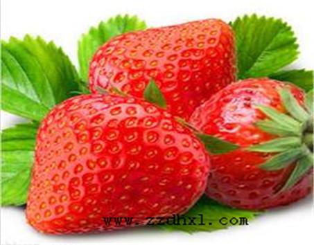 「BOB直播软件下载」草莓叶面肥特点